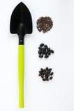 Schaufel und drei Arten schwarze Samen Lizenzfreie Stockfotos