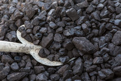 Schaufel und Kohle lizenzfreie stockfotos