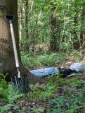 Schaufeln Sie am Baum und am Mann, die im Wald liegen Stockfotos
