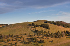 Schauinsland berg nära Freiburg, Tyskland Arkivbilder