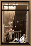 Schaukasten mit den männlichen und weiblichen Mannequins stock abbildung