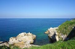 Schaukeln Sie Klippe in adriatischem Meer in Rovinj, Kroatien Stockbild