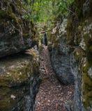 Schaukeln Sie Spur in Höhlen-Eingang Stockfoto