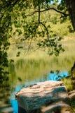 Schaukeln Sie Stange durch den See, der durch Baumaste am Blautanne-Park in Pennsylvania gestaltet wird stockfotografie