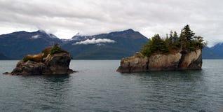 Schaukeln Sie Winterozean Alaska-Auferstehungs-Bucht des Buttesoffenen wassers stockbild