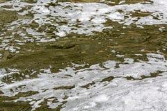Schaum auf verschmutztem Wasser Stockfoto