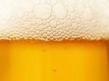 Schaumgummi auf Bier Lizenzfreie Stockbilder