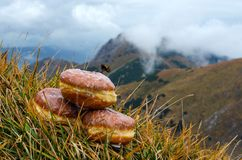 Schaumgummiringe mit Bergen im Hintergrund Lizenzfreies Stockfoto