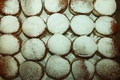 20 Schaumgummiringe mit Zuckerpulver in einem Kasten Lizenzfreies Stockfoto