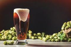 Schaumiges Bier mit Hopfen lizenzfreies stockfoto