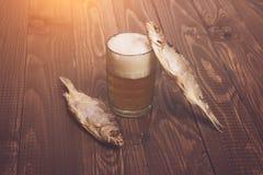 Schaumiges Bier und Fische lizenzfreie stockfotos