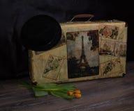 Schäbiges schickes Foto der Weinlese des Blumenstraußes der Frühlingstulpen auf suitcas Lizenzfreies Stockbild