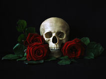 Schädel mit roten Rosen Stockbild