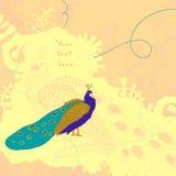 Scheda beige con il pavone Fotografia Stock Libera da Diritti