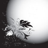Scheda in bianco e nero con il fiore Illustrazione Vettoriale