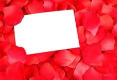 Scheda in bianco sui petali di rosa Fotografia Stock