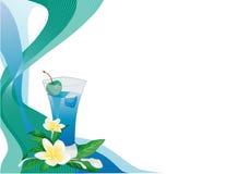 Scheda blu della bevanda con plumeria Immagine Stock