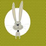 Scheda con il coniglietto sveglio Immagini Stock