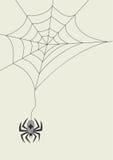 scheda con il ragno ed il cobweb Immagine Stock Libera da Diritti