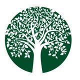 Scheda con l'albero stilizzato Fotografia Stock Libera da Diritti