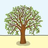 Scheda con l'albero stilizzato Fotografia Stock