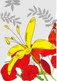 Scheda decorativa con il fiore giallo Fotografie Stock