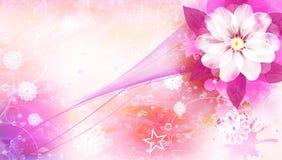 Scheda del fiore Fotografia Stock