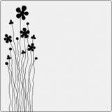 Scheda del fiore Fotografie Stock