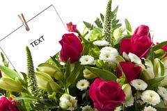 Scheda del fiore Immagini Stock Libere da Diritti