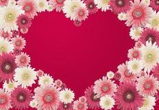 Scheda del fiore dei biglietti di S. Valentino Fotografia Stock