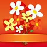 Scheda del fiore del mazzo Fotografia Stock Libera da Diritti