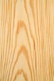 Scheda del pino Fotografia Stock