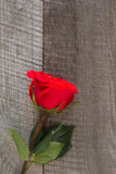 Scheda del `s del biglietto di S Rose rosse sul primo piano di legno della tavola Vista superiore Fotografia Stock