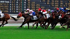 Scheda del segno di corsa di cavalli Fotografia Stock Libera da Diritti