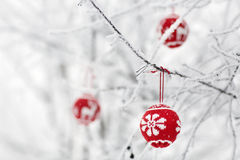 Scheda dell'albero di Natale Fotografia Stock Libera da Diritti