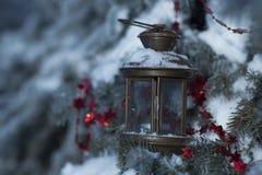 Scheda dell'albero di Natale Fotografie Stock Libere da Diritti