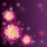 Scheda dell'invito o di saluto con i fiori e le arricciature Fotografie Stock Libere da Diritti