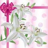 Scheda dell'invito o di saluto con il giglio del fiore Fotografie Stock