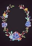Scheda _1 dell'invito Succulenti blu dell'acquerello sull'acquerello scuro p Immagini Stock
