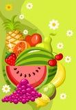 Scheda della frutta illustrazione vettoriale