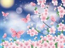 Scheda della sorgente con sakura e la farfalla Fotografia Stock Libera da Diritti