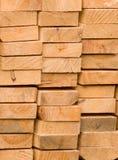 Scheda delle razze conifere in una pila Fotografia Stock Libera da Diritti