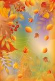 Scheda di autunno con il Web di ragno Immagine Stock Libera da Diritti