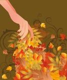Scheda di autunno con la mano femminile Fotografia Stock Libera da Diritti