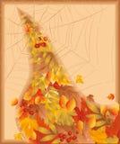 Scheda di autunno con spiderweb Fotografia Stock Libera da Diritti