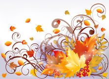 Scheda di autunno, illustrazione di vettore Immagine Stock Libera da Diritti
