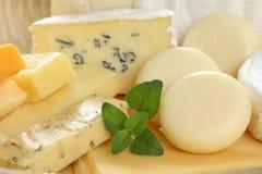 Scheda di formaggio Fotografia Stock