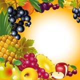 Scheda di ringraziamento. priorità bassa della frutta. Fotografie Stock