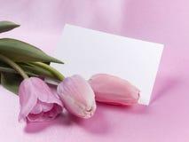 Scheda e tulipani Immagini Stock