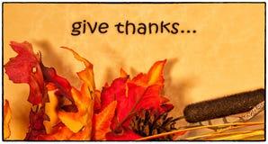 Scheda felice di ringraziamento Immagine Stock
